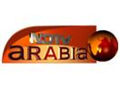 ערוץ חדשות
